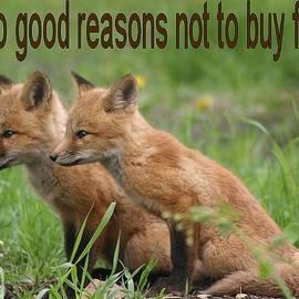 Doris Potter - Two Good Reasons Not To Buy Fur