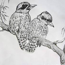 Roberto Gagliardi - Two kookaburra