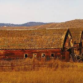 Jeff  Swan - Two Old Barns Near Thorp  Wa