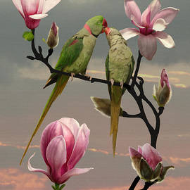 Two Parrots in Magnolia Tree