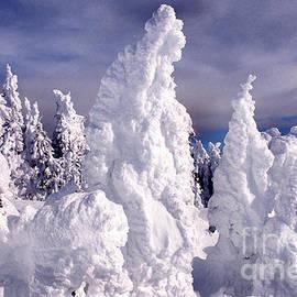Thomas R Fletcher - Two Top Mountain Loop Trail
