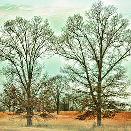 Paulette B Wright - Two Trees