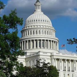 Kim Bemis - U. S. Capitol Building