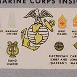 Steven Parker - U S Marine Insignias