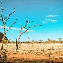 Ross Carroll - Uluru Claws