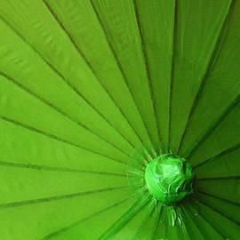 Inessa Burlak - Umbrella Lime