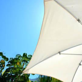 Sue Rosen - Umbrella
