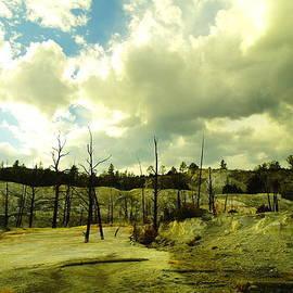 Jeff  Swan - Uncommon landscape