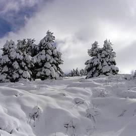 Faouzi Taleb - Under Snow