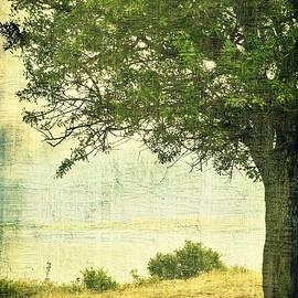 Ioanna Papanikolaou - Under The Tree