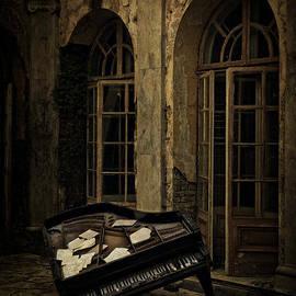 Jaroslaw Blaminsky - Unfinished symphony