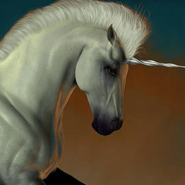 Corey Ford - Unicorn Profile