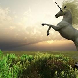 Corey Ford - Unicorn Stag
