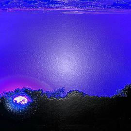 Tina M Wenger - Unusual Blue Sunset
