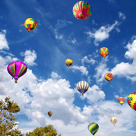 Glenn McCarthy Art and Photography - Up and Away - Hot Air Balloons