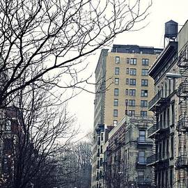 Sarah Loft - Upper West Side Winter