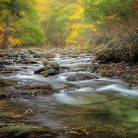 Bill  Wakeley - Upstream Fog Square