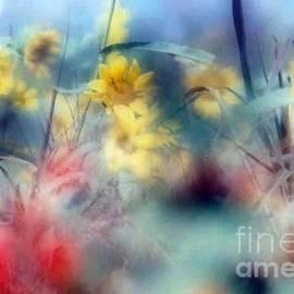 Michael Hoard - Urban Wildflowers