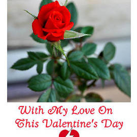 Jay Milo - Valentine Rose
