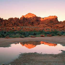 Marianne Campolongo - Valley of Fire Reflections I