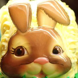 The Art Of Marilyn Ridoutt-Greene - Vanilla Bunny Cake