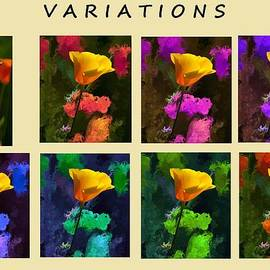 Bruce Nutting - Variations