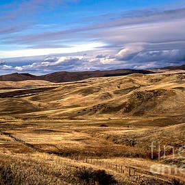 Robert Bales - Vast View of the Rolling Hills