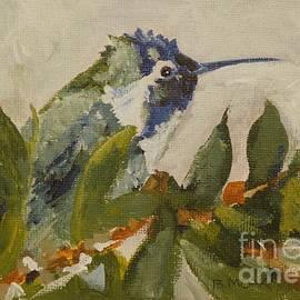 Barbara Moak - Vegas Hummingbird