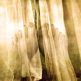 Kathy Bassett - Veiled Feet