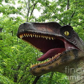 Gerald Strine - Velociraptor