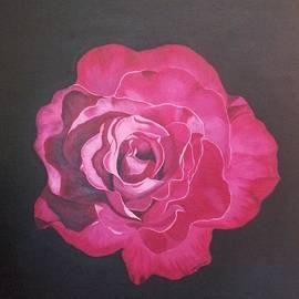 Carol De Bruyn - Velvet Petals