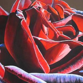 Lillian  Bell - Velvet Rose