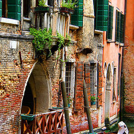 Mariola Bitner - Venice Getaway