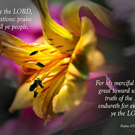 Debbie Nobile - Verses from Psalms 117