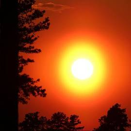 Cynthia Guinn - Very Colorful Sunset