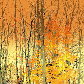 Kathy Barney - Vestiges of Autumn Abstract