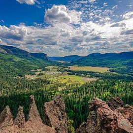 Karen Stephenson - View from Wolf Creek Pass