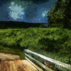 RC deWinter - View of the Night Sky from the Old Bridge