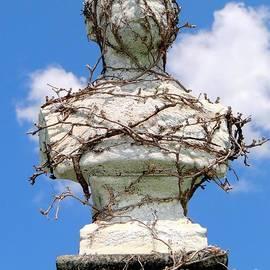 Ed Weidman - Vine Covered Bust