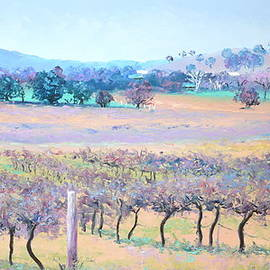 Jan Matson - Vineyards