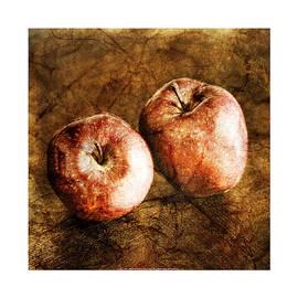 Craig Tinder - Vintage Apples