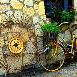 ARTography by Pamela  Smale Williams - Antique Store Hay Rake And Bicycle