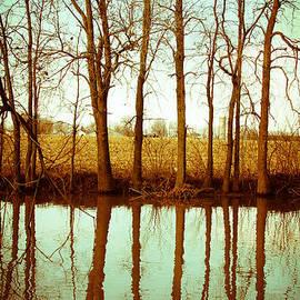 Isabel Poulin - Vintage landscape