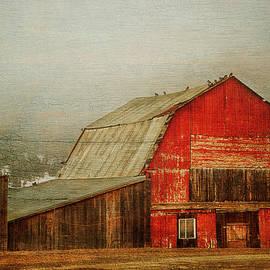 Theresa Tahara - Vintage Red Barn