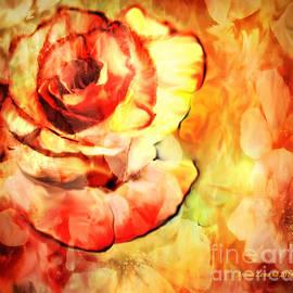 Annie Zeno - Vintage Rose