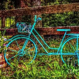 Peggy  Franz - Vintage Summertime Blue Bike