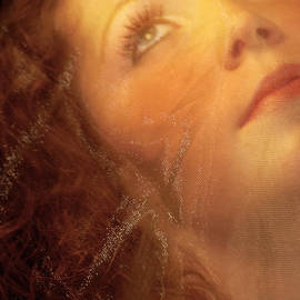 Barbara D Richards - Vintage Under A Veil