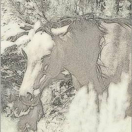 Bobbee Rickard - Vintage Wild Mustang Art