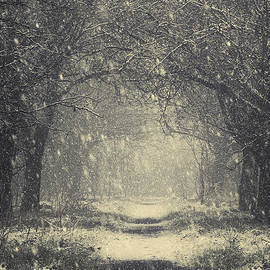 Svetlana Sewell - Vintage Winter