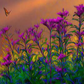 Fli Art - Violets